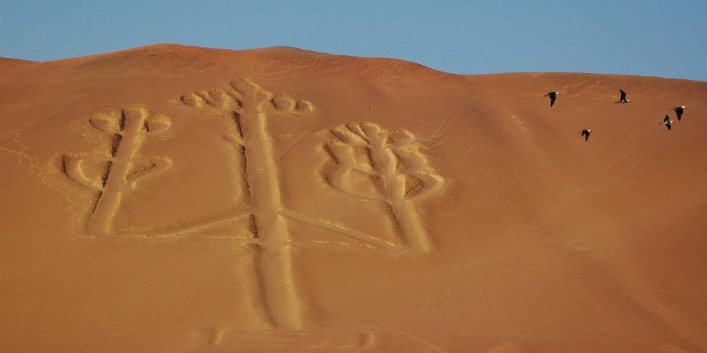 o-nazca-lines-facebook